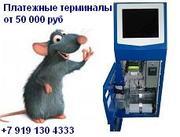 Платежные терминалы в наличии и под заказ
