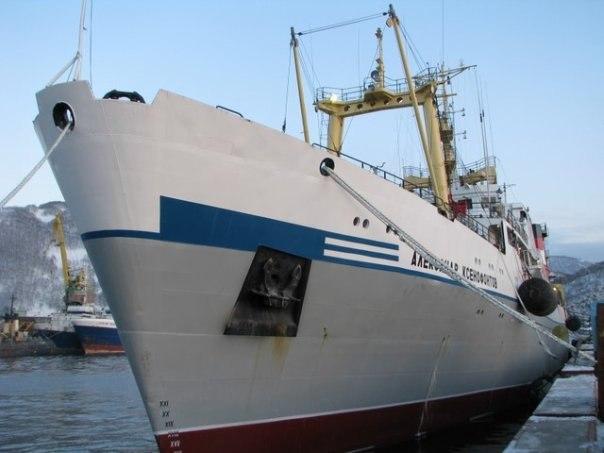 мериноса действительно матрос на рыболовное судно без опыта работы спб смену полиэстеру приходят