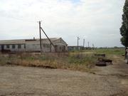 Ферма в Каневском районе