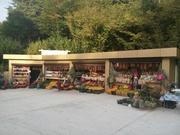Продается готовый бизнес в Сочи