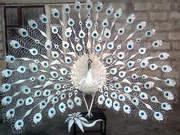 скульптура павлина из металла.