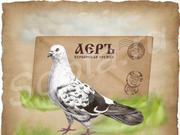 Курьерская служба доставки - АЕРЪ