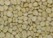 Белая кукуруза: зерно,  мука,  крупа.