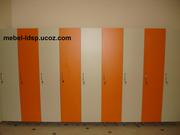 Шкафы для раздевалок фитнес-залов,  спортзалов