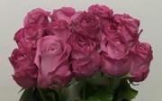 Цветы оптом и в розницу, букеты