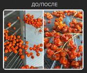 Сушильное оборудование в Днепропетровске