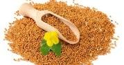Семена горчицы сарептской Ника